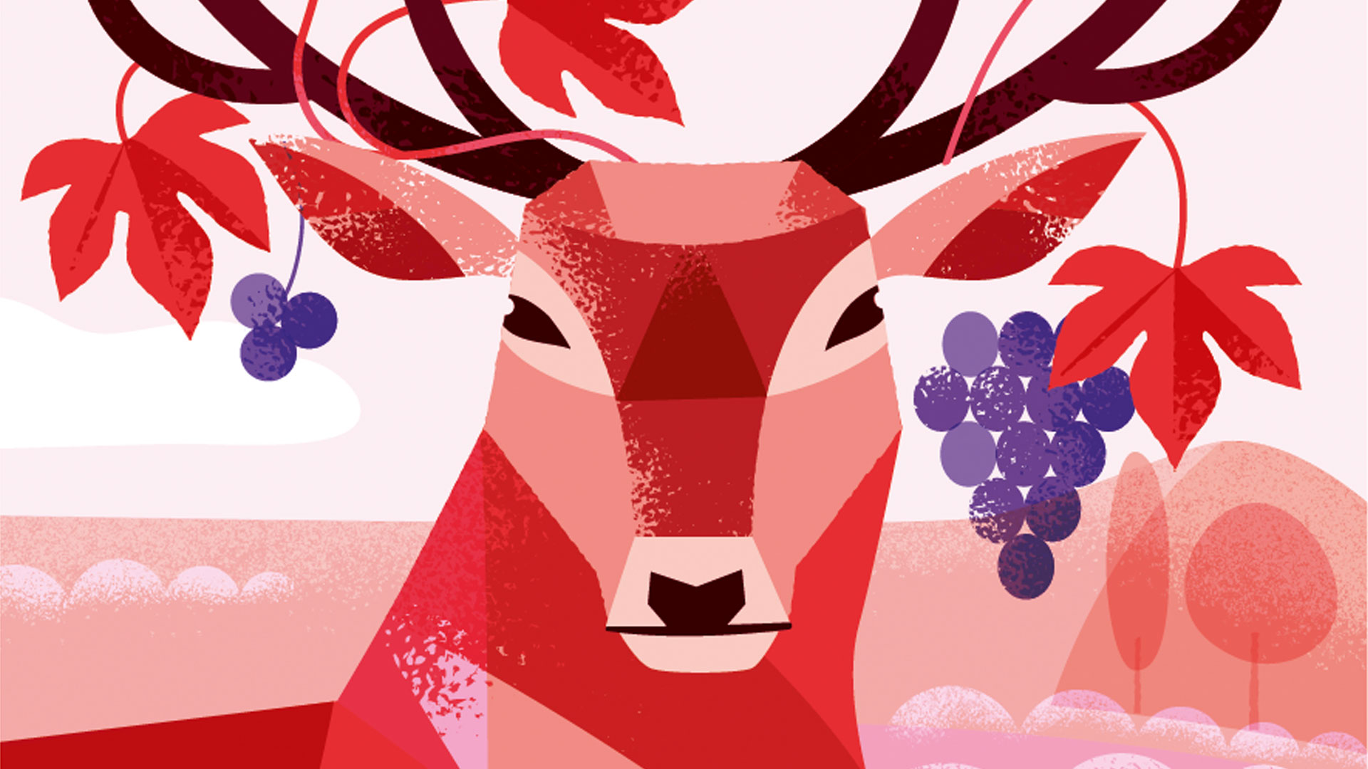 rode-wijn-cortis-wijngaard-zuid-veluwe